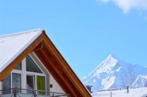 Apartment S&P 3 by Alpen Apartments, Ferienwohnungen  Zell am See - big - 38