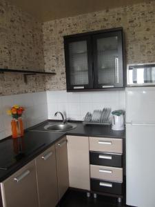 Tatyana`s Apartment 2, Apartmanok  Szumi - big - 17