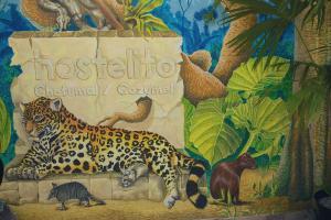 Hostelito Chetumal Hotel + Hostal, Ostelli  Chetumal - big - 39
