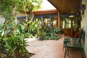 Flor de Mayo Airport Nature Reserve, Guest houses  Alajuela - big - 26