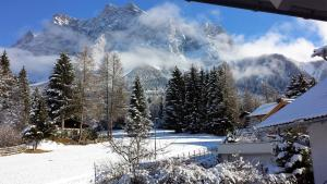 Chalet Danninger, Alpesi faházak  Ehrwald - big - 27