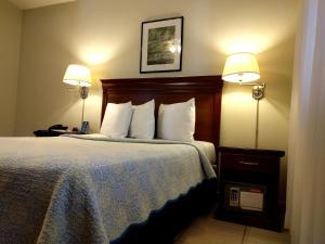 Hotel El Almendro, Hotels  Managua - big - 11