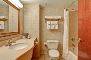 Hampton Inn & Suites Leesburg, Hotels  Leesburg - big - 8