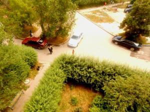 Apartment 16 Mikrorayon 42, Ferienwohnungen  Shymkent - big - 13