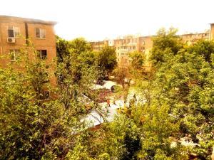 Apartment 16 Mikrorayon 42, Ferienwohnungen  Shymkent - big - 11