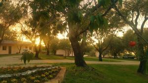 Green Park Hotel & Residence, Residence  Bagnara Calabra - big - 59