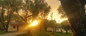 Green Park Hotel & Residence, Residence  Bagnara Calabra - big - 53