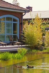 EUT-IN Hotel Alte Straßenmeisterei, Guest houses  Eutin - big - 6