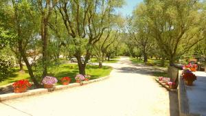 Green Park Hotel & Residence, Residence  Bagnara Calabra - big - 38