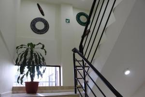 Alto El Quisco, Hotel  El Quisco - big - 62