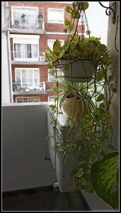Apartamento Montevideo Centro, Ferienwohnungen  Montevideo - big - 21