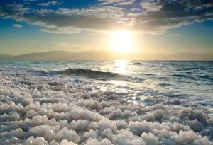 Rose Dead Sea Neve Zohar, Penzióny  Neve Zohar - big - 87