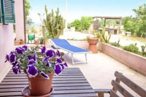 Appartamenti La Palma - AbcAlberghi.com