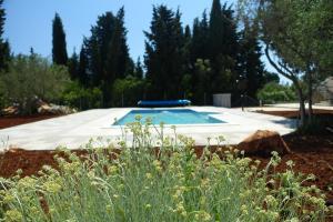 Olive Apartments, Apartmány  Ugljan - big - 55