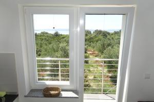 Olive Apartments, Apartmány  Ugljan - big - 35