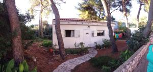 Holiday Home Pini, Дома для отпуска  Mirce - big - 4