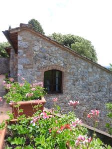 Relais Borgo Di Toiano, Vidiecke domy  Sovicille - big - 44