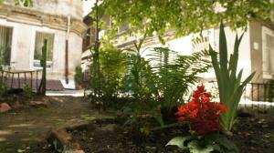 Dream mini Hostel Odessa, Hostels  Odessa - big - 25