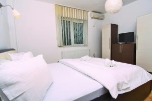 Nirvana Accommodation, Апартаменты  Бухарест - big - 12