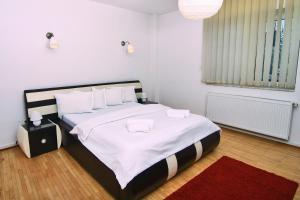 Nirvana Accommodation, Апартаменты  Бухарест - big - 15