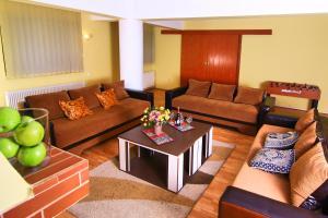 Nirvana Accommodation, Апартаменты  Бухарест - big - 11