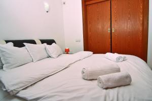 Nirvana Accommodation, Апартаменты  Бухарест - big - 41