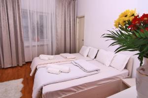 Nirvana Accommodation, Апартаменты  Бухарест - big - 107