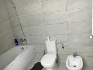Nirvana Accommodation, Апартаменты  Бухарест - big - 94