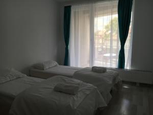 Nirvana Accommodation, Апартаменты  Бухарест - big - 99
