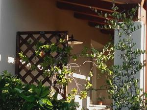 La Balia, Bed & Breakfasts  Marrùbiu - big - 48