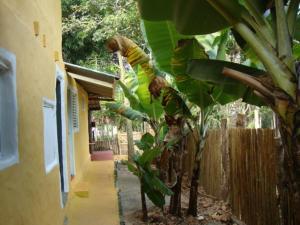 Hostel Moinho, Ostelli  Alto Paraíso de Goiás - big - 11