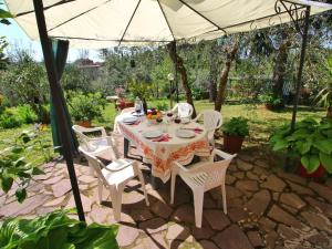 Il Crocino Di Lecchi Torre, Holiday homes  San Sano - big - 28
