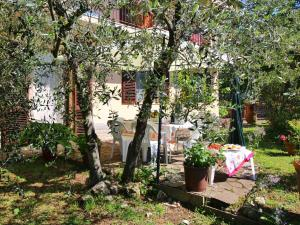 Il Crocino Di Lecchi Torre, Holiday homes  San Sano - big - 24