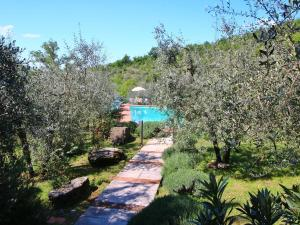 Il Crocino Di Lecchi Torre, Holiday homes  San Sano - big - 22