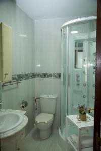 Xavestre apartamentos turísticos, Appartamenti  Santiago di Compostela - big - 3