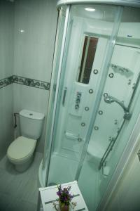 Xavestre apartamentos turísticos, Appartamenti  Santiago di Compostela - big - 15