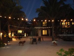 Hotel Casa Iguana Holbox, Hotely  Holbox Island - big - 31