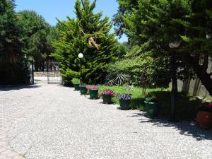 Olympus Hotel Villa Drosos, Szállodák  Litóhoro - big - 14