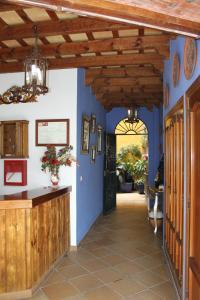 Hostal Lojo, Penziony  Conil de la Frontera - big - 12