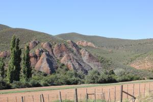 Montana Guest Farm, Bed & Breakfasts  Oudtshoorn - big - 52