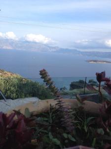 Villa Olga, Vily  Agios Nikolaos - big - 70