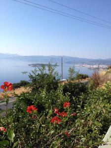 Villa Olga, Vily  Agios Nikolaos - big - 68