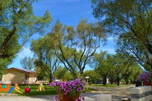 Green Park Hotel & Residence, Residence  Bagnara Calabra - big - 47