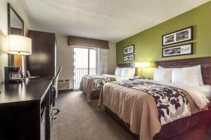 Standard Room with Two Double Beds and Gulf View