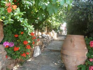 Villa Olga, Vily  Agios Nikolaos - big - 91