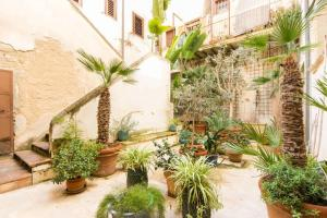 Casa Levante, Apartments  Siracusa - big - 9