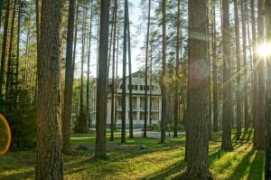 Загородный отель Райвола, Курортные отели  Рощино - big - 34