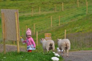 Stóra-Ásgeirsá Farm Stay.  Foto 14