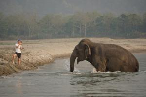 Tiger Tops Tharu Lodge (5 of 44)