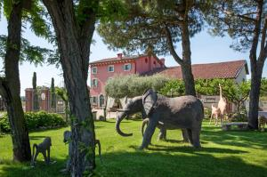 Relais Ca' Maddalena, Farmy  Villafranca di Verona - big - 53